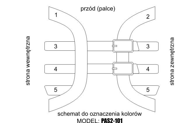 PAS2-101 SCHEMAT