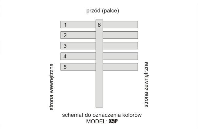 X5P – SCHEMAT
